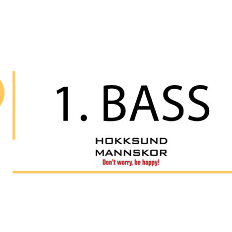 2. Bass