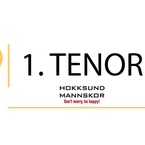 2. tenor